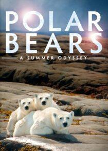 دانلود مستند A Summer Odyssey 2012