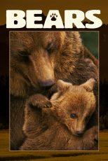 دانلود مستند Bears 2014