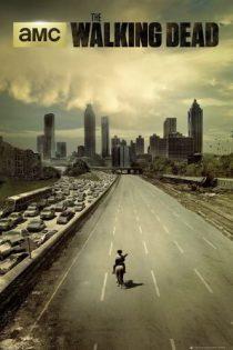 دانلود سریال The Walking Dead