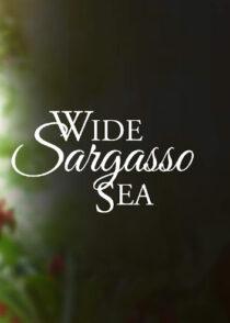 دانلود فیلم Wide Sargasso Sea 1993