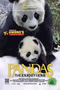 دانلود مستند Pandas: The Journey Home 2014